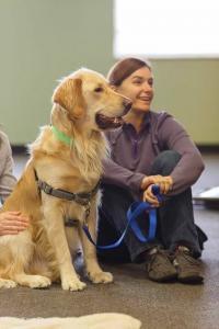 CASA Facility Dog - Jordy 1